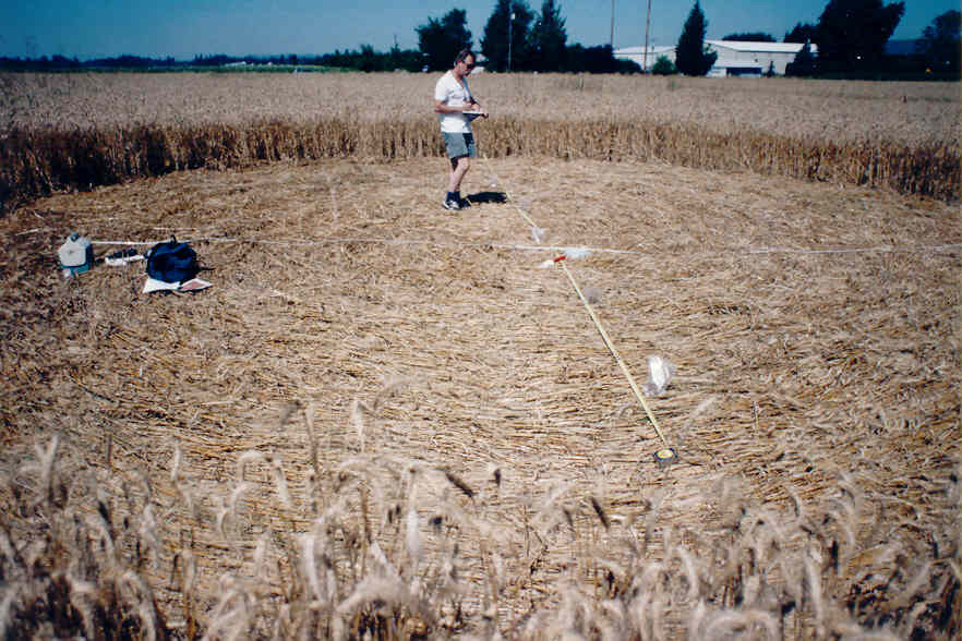 BLT Research Team - Crop Circles and other phenomena